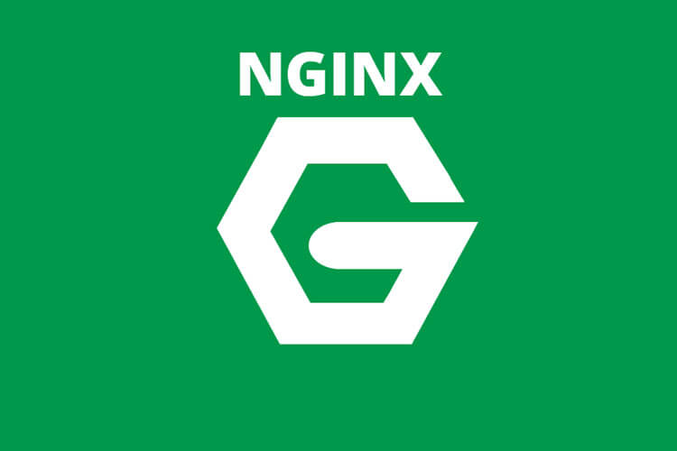 Nginx - udpxy proxy apsauga 4